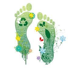 Best Foot Forward Reduce Foot Pain Happy Feet