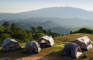 Sleep zzzz natural tranquilizers camping
